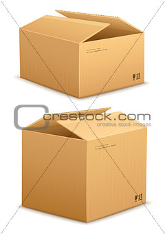Cardboard box for packing