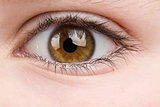 teenager eye macro