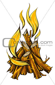 Flame fire of campfire with firewood