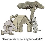 Dog deck