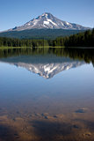 Mountain Lake Trillium Mount Hood Oregon Wilderness