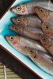 Fresh tasty raw sprats on serving dish