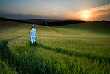 Concept landscape young boy walking through field at sunset in S