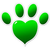 Green paw of an animal