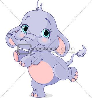 Dancing baby elephant