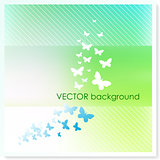 Butterflies on Vector Background