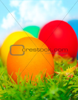 Colorful eggs on green grass
