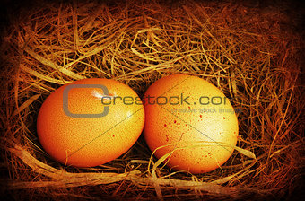 Two golden grungy eggs