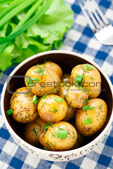 Potato with dill and scalliom