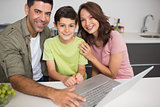 Portrait of a smiling couple with son using laptop