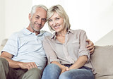 Portrait of smiling mature couple sitting on sofa