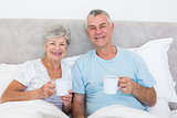 Senior couple holding coffee cups in bed