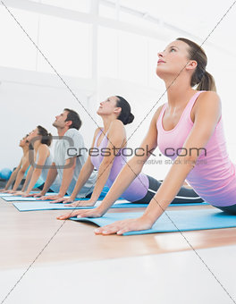 Class exercising in row at fitness studio