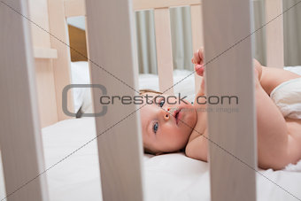 Innocent baby boy lying in crib