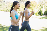 Sporty women jogging