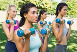 Multiethnic women lifting dumbbells
