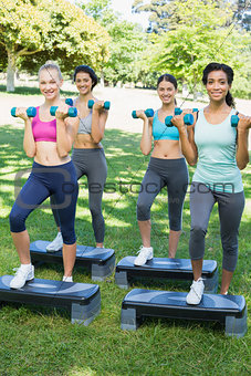 Sporty women doing step aerobics in park