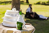 Wedding cake and champagne with couple relaxing at park