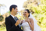 Happy newlywed toasting champagne flutes at park