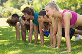 Group of fitness people doing push ups in park
