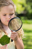 Girl holding leaf and magnifying glass at park