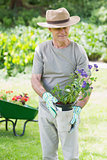 Mature man holding potted plant in garden