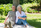 Smiling mature couple sitting against a tree at park