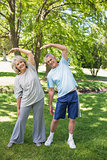 Mature couple stretching hands at park