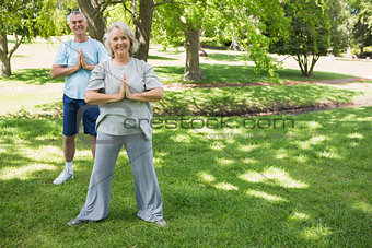 Mature couple with joined hands at park
