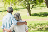 Rear view of loving mature couple at park