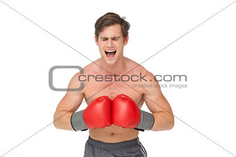 Muscly man wearing red boxing gloves and shouting