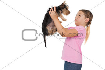 Little girl lifting up yorkshire terrier puppy