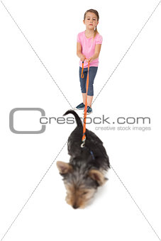 Little girl walking yorkshire terrier pup on a lead