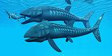 Leedsichthys Ocean Fish