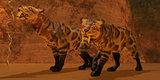 Saber-Toothed Tiger Cave