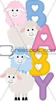 Baby Sheeps