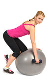 One-Arm Dumbbell Row on Stability Fitness Ball Exercise