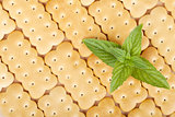 Cookies texture closeup