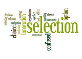 Selection word cloud