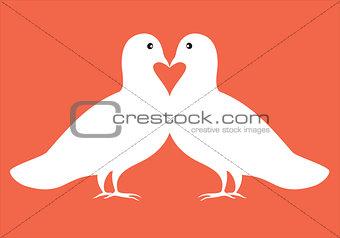 pair of doves in love