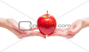 Apple between woman hands