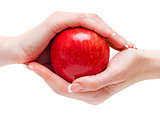 Red apple between hands