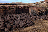Cut peat fuel.