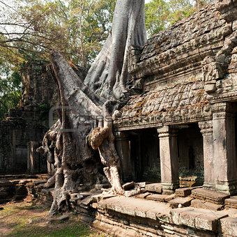 Preah Khan temple, Angkor Cambodia