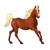 Elegant horse.