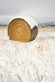 Circular Hay Bale in Snow Covered Field