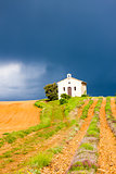 chapel with lavender field, Plateau de Valensole, Provence, Fran