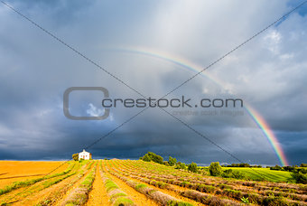 chapel with lavender field and rainbow, Plateau de Valensole, Pr