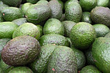 Set of avocados
