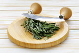 Fresh fragrant green rosemary on a cutting board